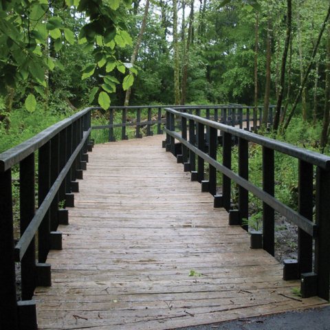Millboard and Plas-Pro Rails Forest Walk  - total carpentry ireland